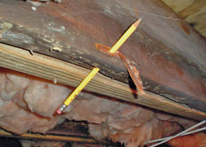Destroyed crawl space structural wood in
